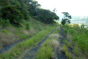 L&NE Trail at Lehigh Gap Nature Center