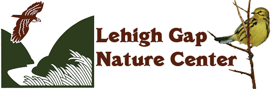 Lehigh Gap Nature Center